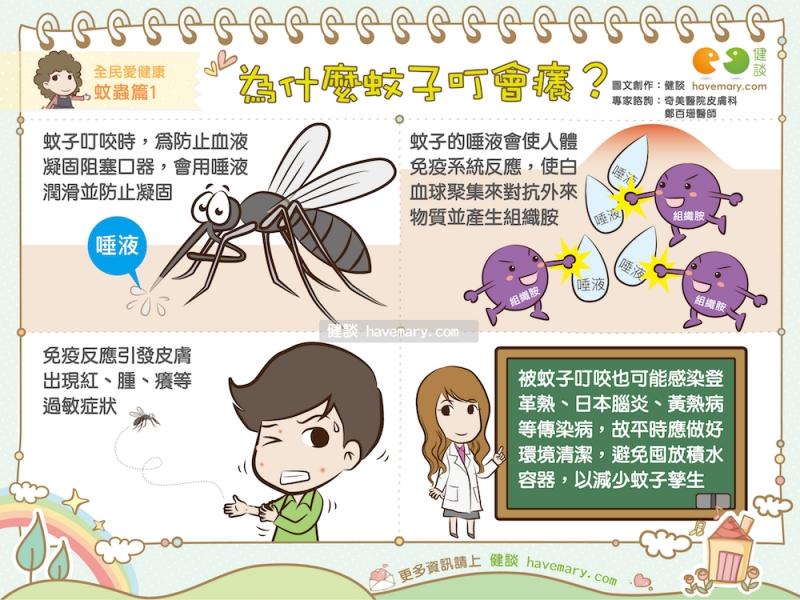 為什麼蚊子叮會癢?|全民愛健康 蚊蟲篇1